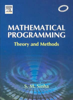 Mathematical Programming: Theory and Methods (Hardback)