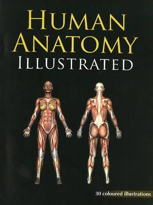 Human Anatomy Illustrated (Paperback)