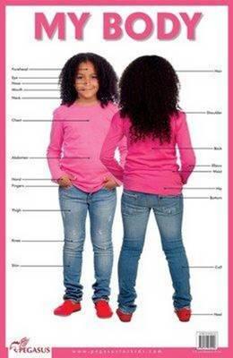 My Body (Poster)