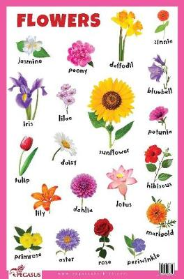Flowers Educational Chart (Poster)