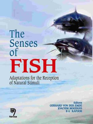 The Senses of Fish: Adaptations for the Reception of Natural Stimuli (Hardback)