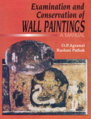 The Examination and Conversation of Wall Paintings (Hardback)
