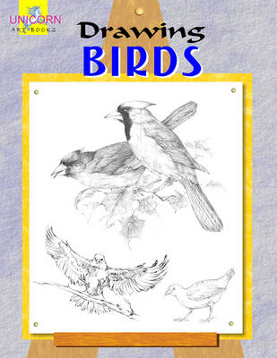 Drawing Birds (Paperback)