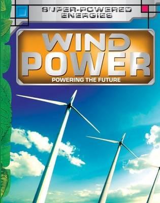 Wind Power: Key stage 3 - Future Power,Future Energy (Hardback)