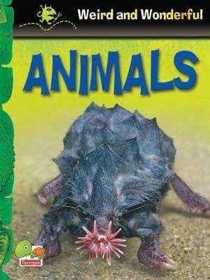 Animals: Key stage 1 - Weird & Wonderful S. (Paperback)