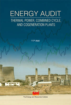 Energy Audit: Thermal Power, Combined Cycle, and Cogeneration Plants (Hardback)