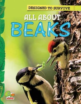 All About Beaks: Key stage 1 - Designed to Survive (Paperback)
