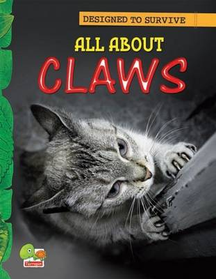 All About Claws: Key stage 1 - Designed to Survive (Paperback)