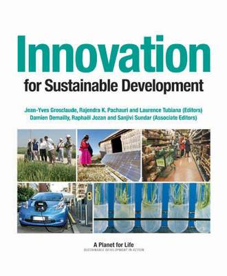 Innovation for Sustainable Development (Paperback)