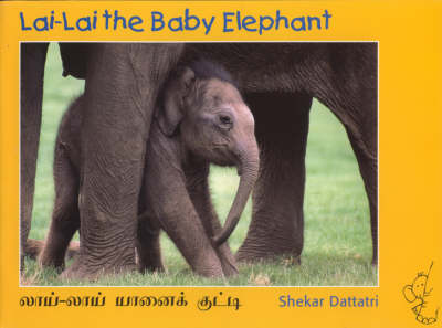 Lai Lai the Baby Elephant (Paperback)