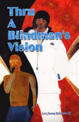Thru a Blindman's Vision (Paperback)