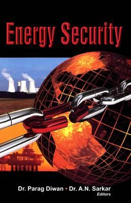 Energy Security (Hardback)