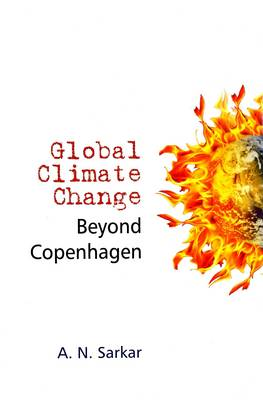 Global Climate Change Beyond Copenhagen (Hardback)