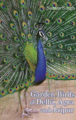 Garden Birds of Delhi, Agra & Jaipur (Paperback)