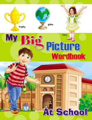 My Big Picture Workbook (Paperback)