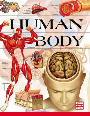 Knowledge Safari: Human Body (Hardback)