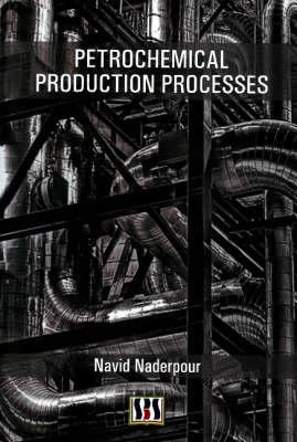 Petrochemical Production Processes (Hardback)
