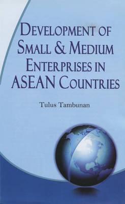 Development of Small and Medium Entreprises in ASEAN Countries (Hardback)
