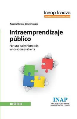 Intraemprendizaje Publico (Paperback)