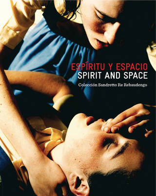 Spirit and Space: Sandretto Re Rebaudengo Collection (Paperback)