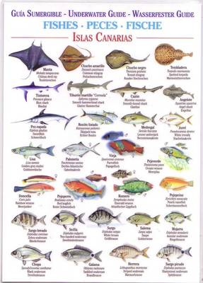 Fishes (Waterproof Field Guide) - Canary Islands Field Guides (Bath book)