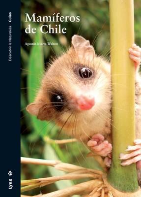 Mamiferos De Chile (Paperback)