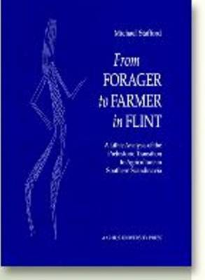 From Forager to Farmer in Flint: A Lithic Analysis of the Prehistoric Transition to Agriculture in Southern Scandinavia (Hardback)