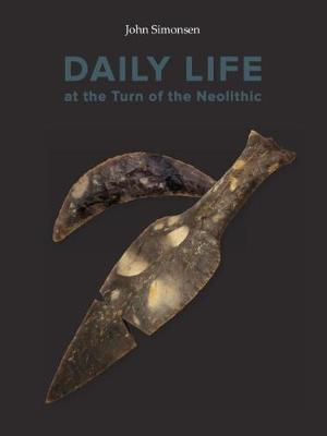 Daily Life at the Turn of the Neolithic: A comparative study of longhouses with sunken floors at Resengaard and nine other settlements in the Limfjord region, South Scandinavia - Publications of the Jutland Archeaological Society 98 (Hardback)