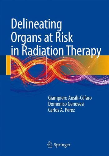 Delineating Organs at Risk in Radiation Therapy (Hardback)