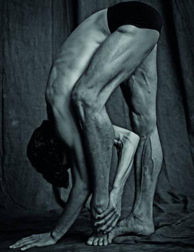 Les Danseurs (Hardback)