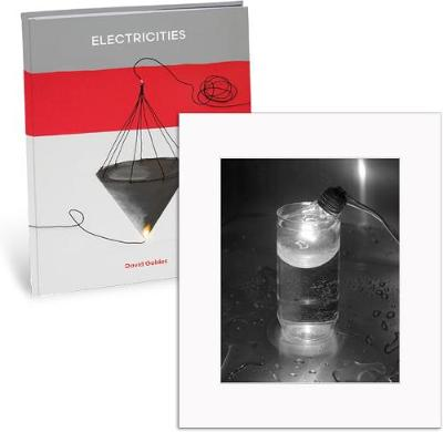 David Goldes: Electricities (Limited Edition) (Hardback)