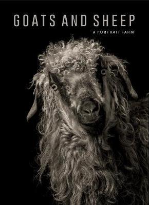 Goats and Sheep. A Portrait Farm (Hardback)