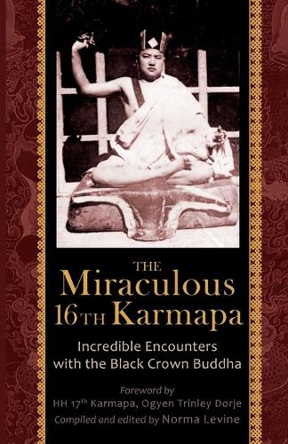 The Miraculous 16th Karmapa (Paperback)