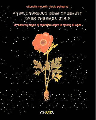 Ottonella Mocellin and Nicola Pellegrini: An Incongruous Beam of Beauty Over the Gaza Strip (Paperback)