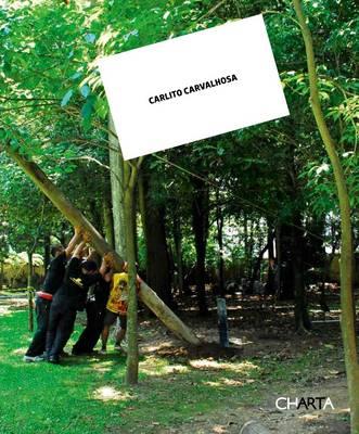 Carlito Carvalhosa: Nice to Meet You (Paperback)