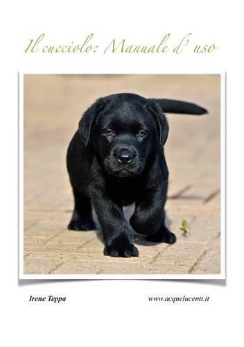 Il cucciolo: Manuale d'uso (Paperback)