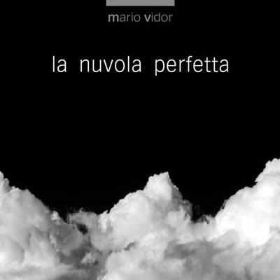 Perfect Cloud (Hardback)