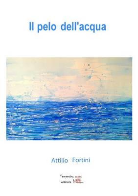 Il Pelo Dell'acqua (Paperback)