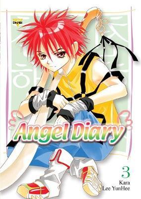Angel Diary: v. 3 (Paperback)