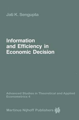 Information and Efficiency in Economic Decision - Advanced Studies in Theoretical and Applied Econometrics 4 (Hardback)