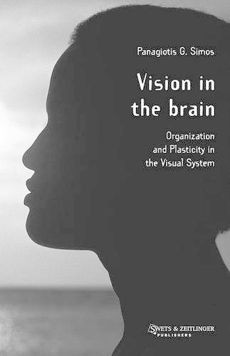 Vision in the Brain (Hardback)
