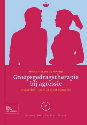 Groepsgedragstherapie Bij Agressie: Gevalsbeschrijvingen Uit de Behandelkamer - Psychotherapie in Praktijk (Paperback)