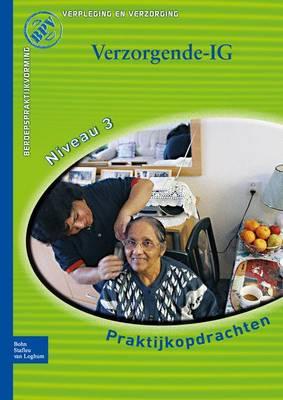 Beroepspraktijkvorming, Verzorgende (Paperback)