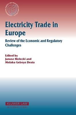 Electricity Trade in Europe Review of the Economic and Regulatory Changes: Review of the Economic and Regulatory Changes - International Energy & Resources Law and Policy Series Set (Hardback)