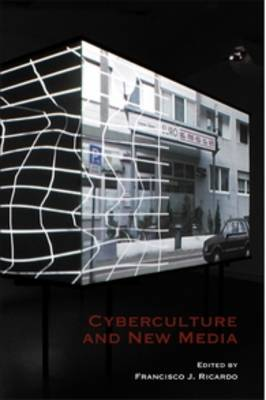 Cyberculture and New Media - At the Interface / Probing the Boundaries 56 (Paperback)