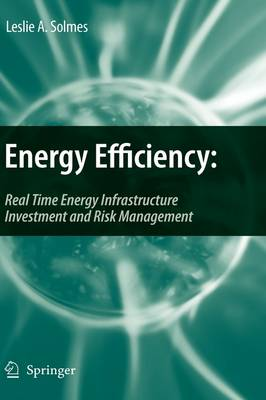 Energy Efficiency: Real Time Energy Infrastructure Investment and Risk Management (Hardback)