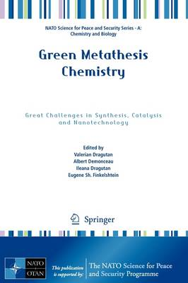 Green Metathesis Chemistry: Great Challenges in Synthesis, Catalysis and Nanotechnology - NATO Science for Peace and Security Series A: Chemistry and Biology (Paperback)