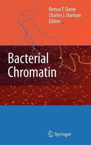 Bacterial Chromatin (Hardback)