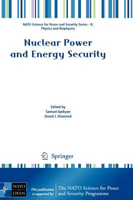 Nuclear Power and Energy Security - NATO Science for Peace and Security Series B: Physics and Biophysics (Paperback)