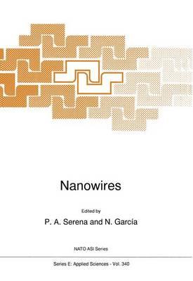 Nanowires - Nato Science Series E: 340 (Paperback)
